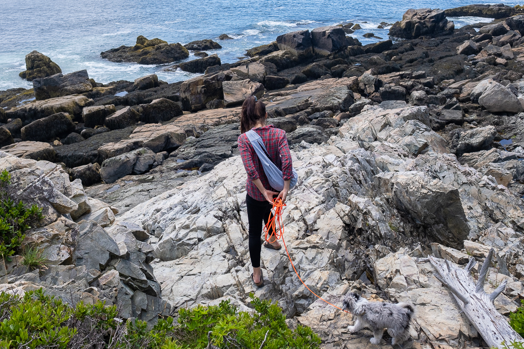 Woman and puppy climbing on rocks at Acadia National Park
